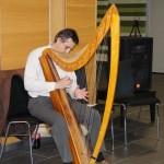 Harfenist Jiri Vysata, Pilsen